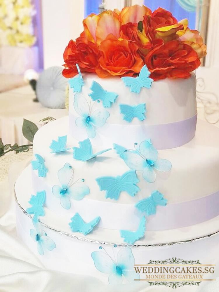 Papillon Bleu_1